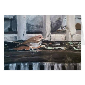 "Greeting Cards ""Humboldt Sparrow"" by Amber Larsen"