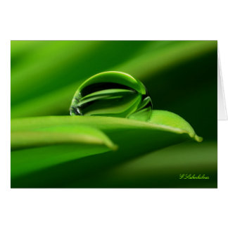 Greeting map Greetingcard water drop Card