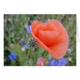 Greeting map poppy flower heart, shapable in blank card