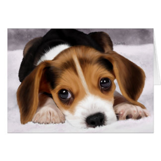 Greetings Cards - Beagle Puppy