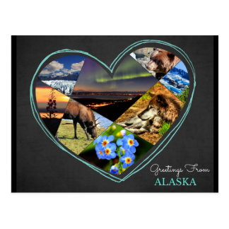 Greetings From Alaska ♥ Postcard