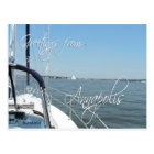Greetings from Annapolis sailboat  Chesapeake Bay Postcard