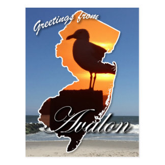 Greetings from Avalon Postcard