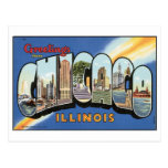 Greetings From Chicago Vintage Postcard