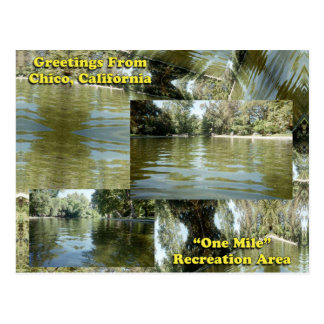 Greetings from Chico, California Postcard