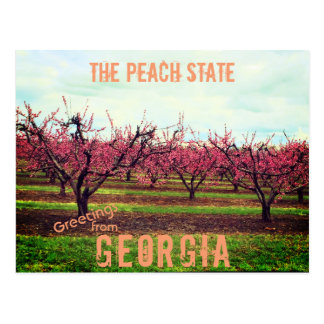 Greetings From Georgia Peach Orchard Postcard