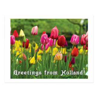 Greetings from Holland Post Cards