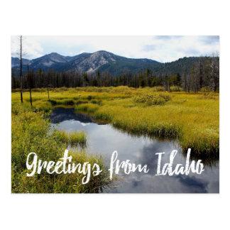 Greetings From Idaho Scenic Photo Postcard