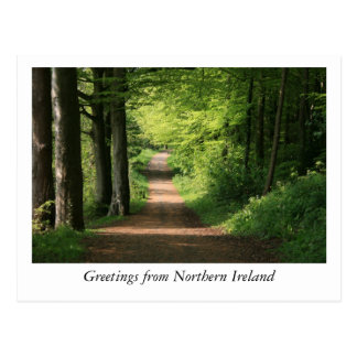 Greetings from Northern Ireland Postcard