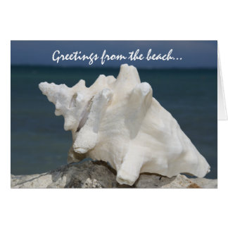 Greetings from the Beach Conch Shell Card