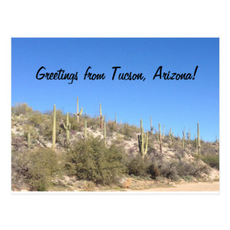 Greetings from Tucson, Arizona! Postcard