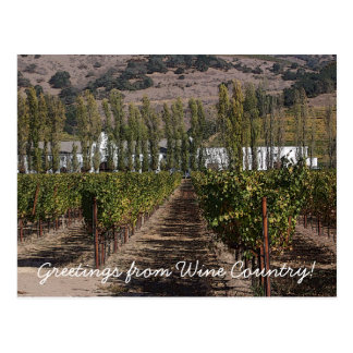 Greetings from Wine Country! Postcard