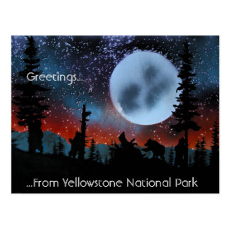 Greetings......From Yellowstone National Park Postcard