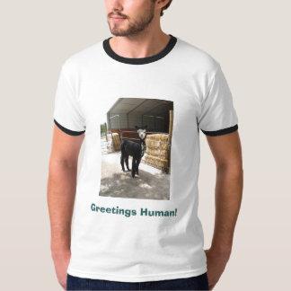 Greetings Human! alpaca shirt
