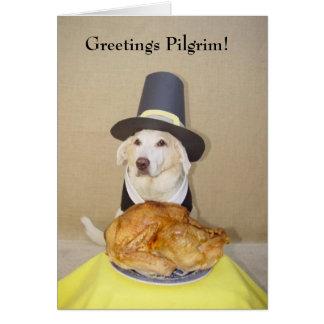 Greetings Pilgrim! Card