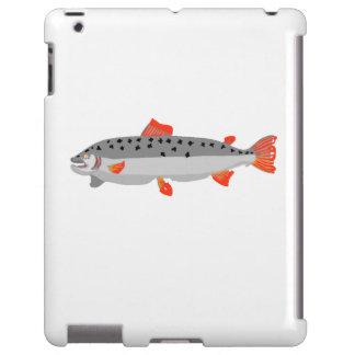 Grey And Orange Fish