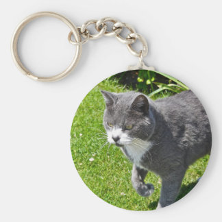 Grey and White Cat  Key Chain
