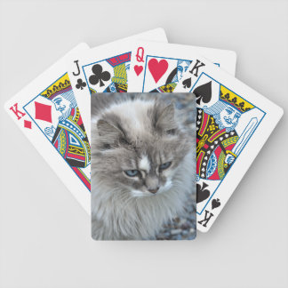 Grey and white kitty cat bicycle playing cards