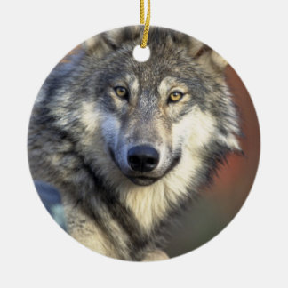 Grey and White Wolf Ornaments