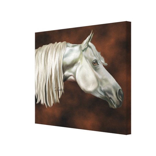 Grey Arabian Horse Equine Canvas Print