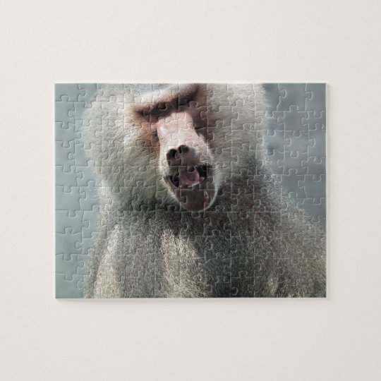 Grey Baboon looking at you with his mouth open Jigsaw Puzzle