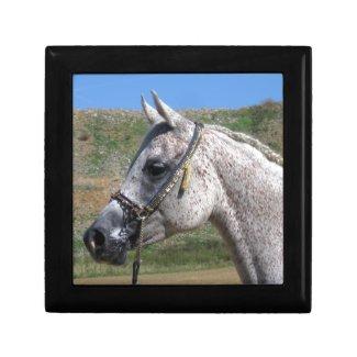 Grey Beduoin Arabian Mare Jewelry Keepsake Box