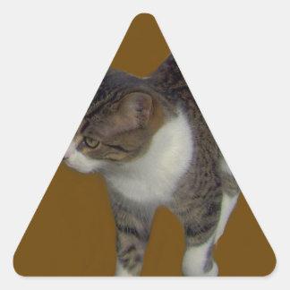 Grey Brown Cat Triangle Sticker