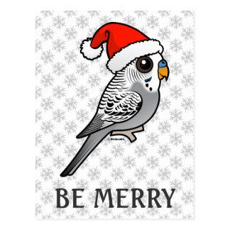 Grey Budgie Santa Claus Postcard