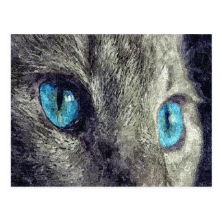 Grey Cat Blue Eyes Postcard