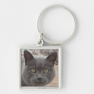 Grey cat roof keychain