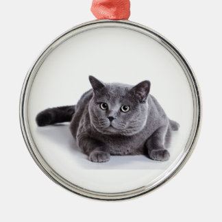 Grey Cat Silver-Colored Round Ornament