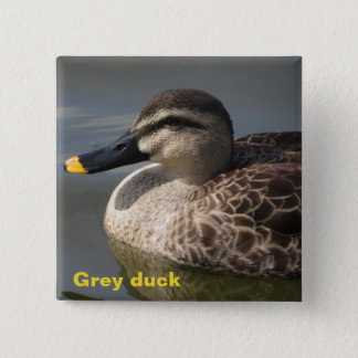 Grey duck 2 inch square button