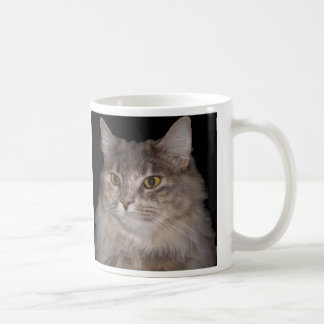 Grey Furry Cat on Coffee Cup