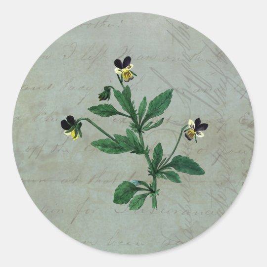 Grey Green with Botanical Violas Classic Round Sticker