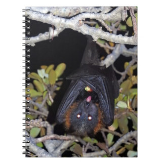 Grey-Headed Flying Fox Notebooks