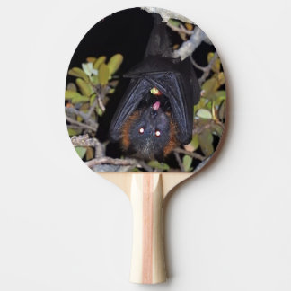 Grey-Headed Flying Fox Ping Pong Paddle