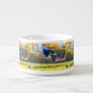 Grey heron, ardea cinerea bowl