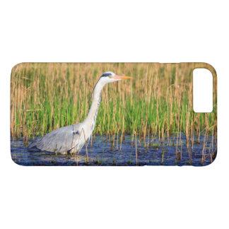 Grey heron, ardea cinerea, in a pond iPhone 8 plus/7 plus case
