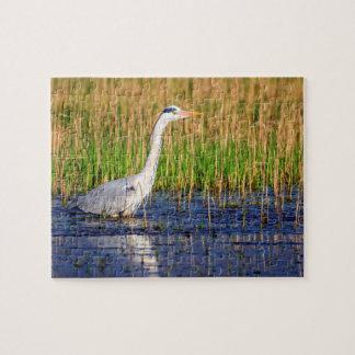 Grey heron, ardea cinerea, in a pond jigsaw puzzle