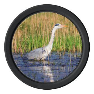 Grey heron, ardea cinerea, in a pond poker chips