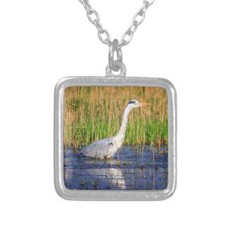 Grey heron, ardea cinerea, in a pond silver plated necklace