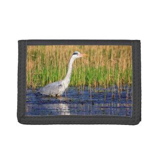 Grey heron, ardea cinerea, in a pond tri-fold wallets