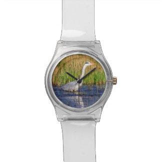 Grey heron, ardea cinerea, in a pond watch