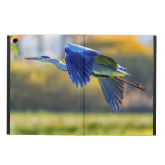 Grey heron, ardea cinerea iPad air cover