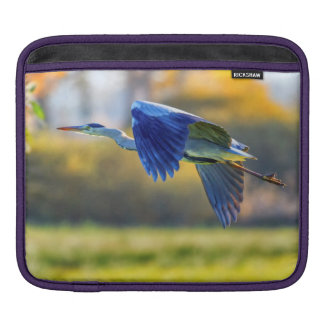 Grey heron, ardea cinerea iPad sleeve
