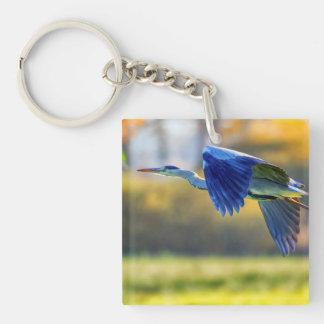 Grey heron, ardea cinerea keychain