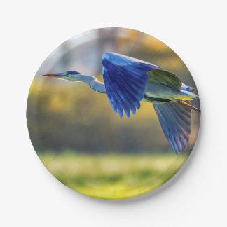 Grey heron, ardea cinerea paper plate