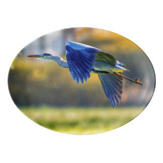 Grey heron, ardea cinerea porcelain serving platter