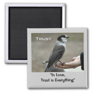Grey Jay Motivational Magnets