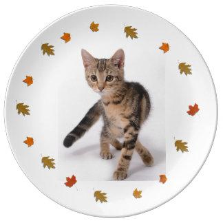Grey Kitten Plate